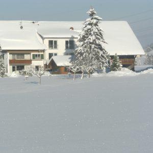 Winterfoto 2012 015
